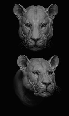 ArtStation - Big Feline Study, Antonio Esparza Over the course of the woman's five-decade job, Animal Sketches, Animal Drawings, Lion Anatomy, Modelos 3d, Wood Carving Art, Lion Art, Sculpture Clay, Animal Sculptures, Zbrush