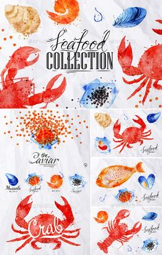 Watercolor Seafood Signs  - Food Objects