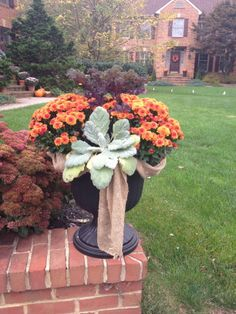 Fall, Autumn container garden, orange mums, redbor kale, sage, burlap ribbon, black container