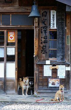 jackilong.blogspot.com