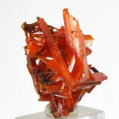 Crocoite ~ Adelaide Mine, Dundas, Zeehan District, Tasmania, Australia