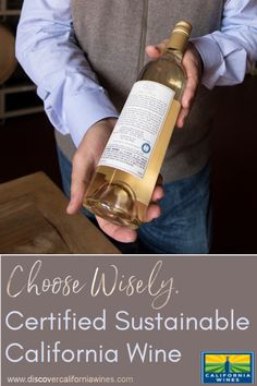 Certified-sustainable wines come from wineries with a demonstrated commitment to a core set of values, including employee well-being, environmental stewardship and community involvement. Use your purchasing power wisely. Wellness Shots, Wellness Tips, Health And Wellness, Grape Types, Types Of Wine, Cooking With White Wine, Wine Night, California Wine