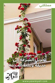 قد يتهيّأ للسائح أنه يسير في حديقة، لا وسط الباطون والبيوت في المدن الإيطالية أو اليونانية. السبب هو أن الإيطاليين العاشقين للخضار والزهور والنباتات، حوّلوا كل إنش من المساحة المتاحة على شرفاتهم وأطراف نوافذهم إلى لوحة مزهوة بالألوان بفضل الزهور والورود التي يزرعونها عليها، فيما اشتهر اليونانيون في زراعة الخضراوات على شرفاتهم التي يستخدمونها في إعداد السلطة.