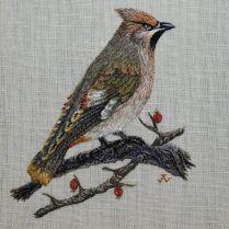 Waxwing - Jen Goodwin www.jengoodwinembroidery.com