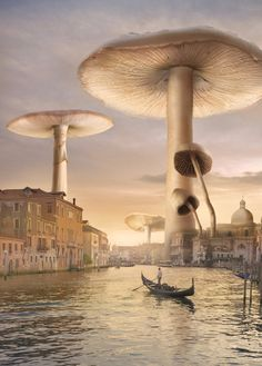 ♂ Dream Imagination Surrealism Surreal art Venice Mushrooms by *Shorra