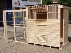 Photo by Rogie Arceta Pigeon Cage, Pet Pigeon, Pigeon Bird, Loft Plans, Pigeon Loft Design, Racing Pigeon Lofts, Pigeon House, Homing Pigeons, Palomar