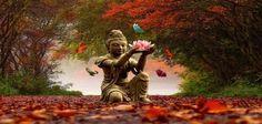 25 leçons de vie à apprendre deBouddha  J'ai appris tellement de leçons de vie magnifiques et puissantes qui ont changé ma vie en étudiant le bouddhisme et en lisant de nombreuses citations de Bouddha . 1. L'amour guérit tout. « Jamais la haine ne cesse par la haine ; c'est la bienveillance qui réconcilie. …