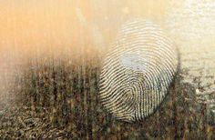 Spirit's Fingerprint: A Unique Way To Identify The Presence Of Your Spirit Guide — Amanda Linette Meder Richard Castle, Wd 40 Spray, Live Scan Fingerprinting, Criminal Profiling, Identity In Christ, Spirit World, Finding God, How To Protect Yourself, Forensics