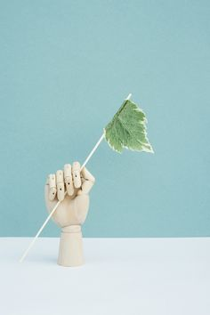 Gestalten | Still Life Photography by Tabea Mathern