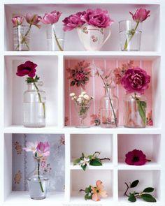 Pink Spring ......