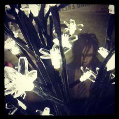 #Dregen with #yulelights #jul2015 #Yule2015 #joulu2015