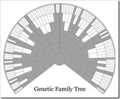 "Your Genetic pedigree is a subset of your genealogical pedigree. ""This is not a pie chart of my pedigree, it is a pie chart of only what I have inherited.""  #DNA #familytree #genes"