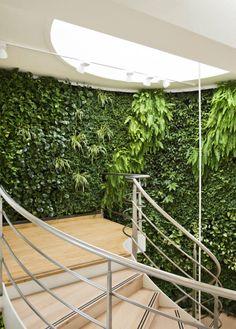 Leef, woon en werk prettiger. Wij ontwikkelen producten waarmee we planten kunnen integreren in de stad. Zonder ruimte in te nemen! Lees hier meer over Green Fortune