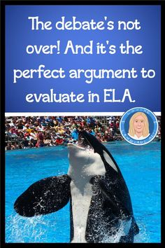 Updated in 2020 as a distance learning WebQuest & PDF while the debate continues (killer whales continue to be sold worldwide). Authentic, relevant, in-depth argument examination. Delves into both sides of this hotly debated issue by analyzing claims & counterclaims from BOTH sides in multiple primary sources. Step-by-Step guided activity leads students to analyze evidence presented by scientists, corporate leaders at Sea World, & activists. Perfect argument for English language arts ELA class. Claim Evidence Reasoning, Citing Textual Evidence, Middle School Ela, Middle School English, Student Studying, Student Reading, 8th Grade Ela, Common Core Reading, Primary Sources