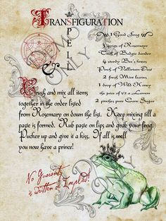 Book of Shadows:  #BOS Transfiguration page.