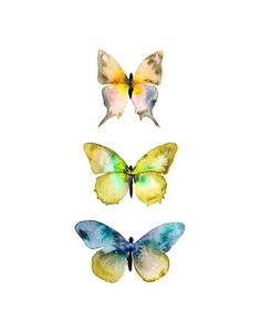 Title: Watercolor Butterflies No. 4    Watercolor Butterfly Print.    Print Size Options: See the Size bar in the upper right corner of this