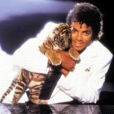 Michael and Tiger Cub Wallpaper from Michael Jackson. There were four things that Michael loved, his children, his family, his fans and animals. Michael Jackson Thriller, Michael Jackson Pics, Janet Jackson, Jeff Porcaro, Billie Jean King, Paul Mccartney, Mumia Abu Jamal, Thriller Album, Plastic Surgery Photos