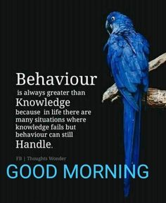 If you are looking for the best good morning wishes, don't worry here are good morning messages to send your family, friends, and loved ones. Beautiful Morning Quotes, Happy Morning Quotes, Good Morning Quotes For Him, Good Morning Texts, Good Morning Inspirational Quotes, Morning Greetings Quotes, Good Morning Good Night, Good Morning Wishes, Good Morning Images