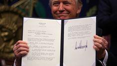Una grafologa descubre la personalidad de Trump a travez de su firma.