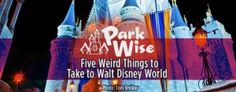 Five Things You Might Want to Take to Walt Disney World