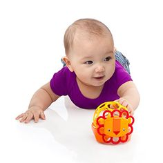 O Ball Rollie Rattles Toy