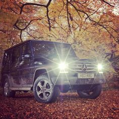 The G-Class with autumn leaves