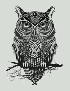 Celtic owl More