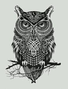 Celtic owl More