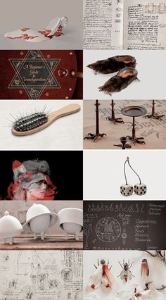 Hogwarts subjects | Transfiguration