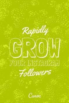How to Rapidly Grow Your Instagram Followers http://www.razorsocial.com/growing-instagram-followers/