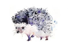 Hedgehog by Kristina Brozicevic | Artfinder