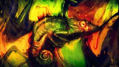 High Resolution Wallpaper chameleon