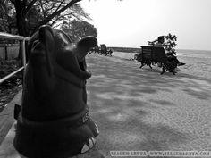 Índia - Kerala - Kochi Kochi, Kerala, South India, Littoral Zone, City, Travel