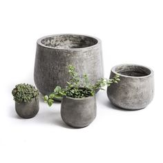 Show off your green thumb by placing your herbs, succulents and flowers in this chic planter. Crafted with lightweight charcoal grey concrete, this pod-shaped planter is available in several sizes, making it the perfect way to highlight your greenery.