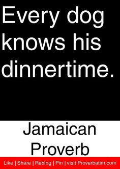 Every dog knows his dinnertime. - Jamaican Proverb #proverbs #quotes