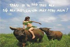 Dịch vụ kế toán trọn gói  http://ketoanthuevietnam.net/dich-vu-ke-toan/ http://ketoanthuevietnam.net/dich-vu-ke-toan-thue-tron-goi/ Dịch báo cáo tài chính cuối năm http://ketoanthuevietnam.net/dich-vu-bao-cao-tai-chinh-cuoi-nam/ http://ketoanthuevietnam.net/dich-vu-ke-toan-noi-bo/ http://ketoanthuevietnam.net/dich-vu-bctc-vay-von-ngan-hang/