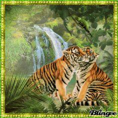 Love in the jungle