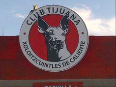 Estadio Caliente in Tijuana, Baja California