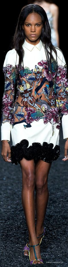 Spring 2015 Ready-to-Wear Mary Katrantzou