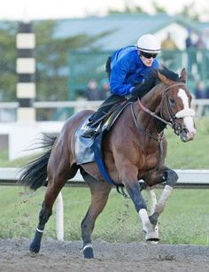 Chester County's Union Rags ready to roll in the Fountain of Youth in Florida on Sunday