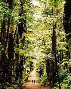 Rotorua from @InAFaraway_Land