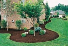 There are lots of affordable backyard landscaping ideas you can look into. For a backyard landscape upgrade, you don't need to spend so much cash to get an outdoor look that is easy and affordable. House Landscape, Landscape Designs, Landscape Plans, Lawn And Landscape, Landscape Fabric, Landscape Edging, Landscape Photos, Landscape Architecture, Landscaping Trees