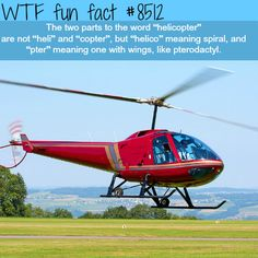 Helicopter meaning - WTF fun facts