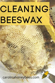 Beeswax Recipes, Chicken Tractors, Farm Chicken, Bee Facts, Backyard Beekeeping, Bee Friendly, Hobby Farms, Save The Bees, Bee Happy