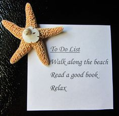Beach Decor  Starfish Magnets  3 pcs. by CereusArt on Etsy, $10.00