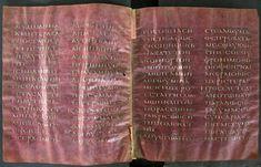 Folios 23v and 24r of the Codex Petropolitanus Purpureus, a 6th century Greek New Testament codex