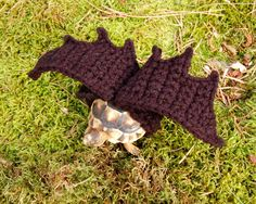 Hey, I found this really awesome Etsy listing at https://www.etsy.com/listing/178617808/bat-wings-tortoise-yard-finder-made-to