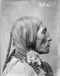 Crazy Horse alias Cavallo Pazzo / Lost source.