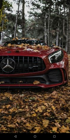 Ferrari red Mercedes-AMG GT in the forest. High-end luxury sport cars Mercedes Benz Amg, Carros Mercedes Benz, Mercedes Auto, Benz Car, Bmw Autos, Autos Toyota, Toyota Cars, Toyota Prius, Carros Audi