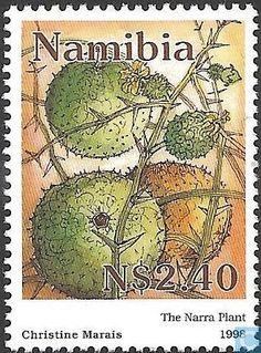 Postage Stamps - Namibia - Acanthosicyos horridus